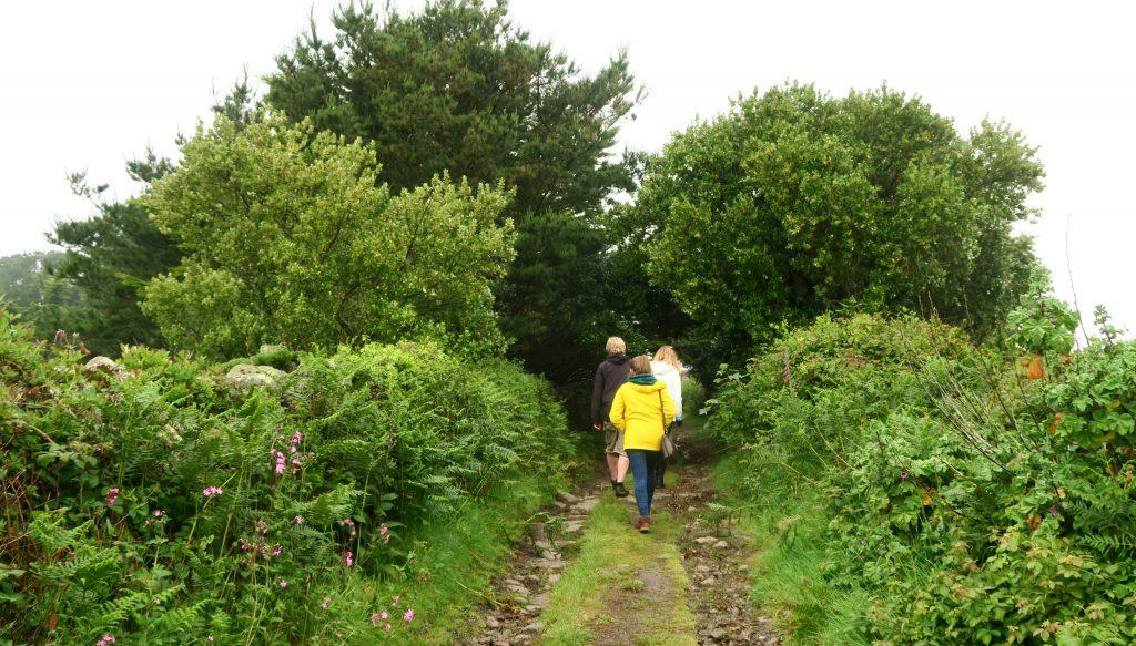 Tresco - Isles of Scilly - Landscape