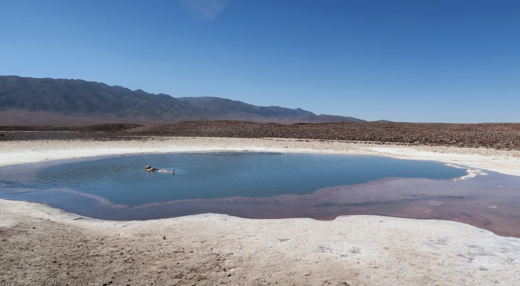 Chile Floating Lagoon