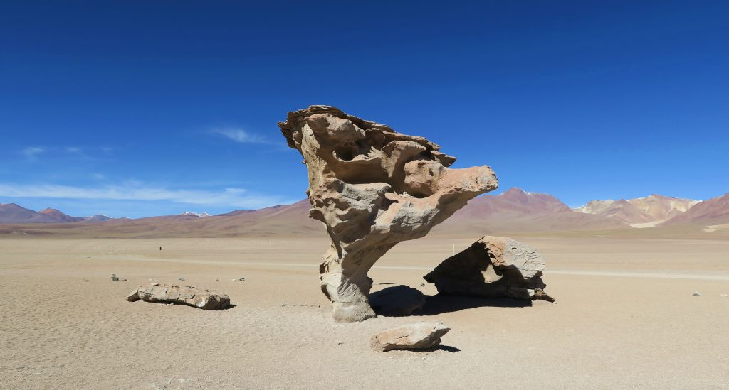 Uyuni Rock Tree