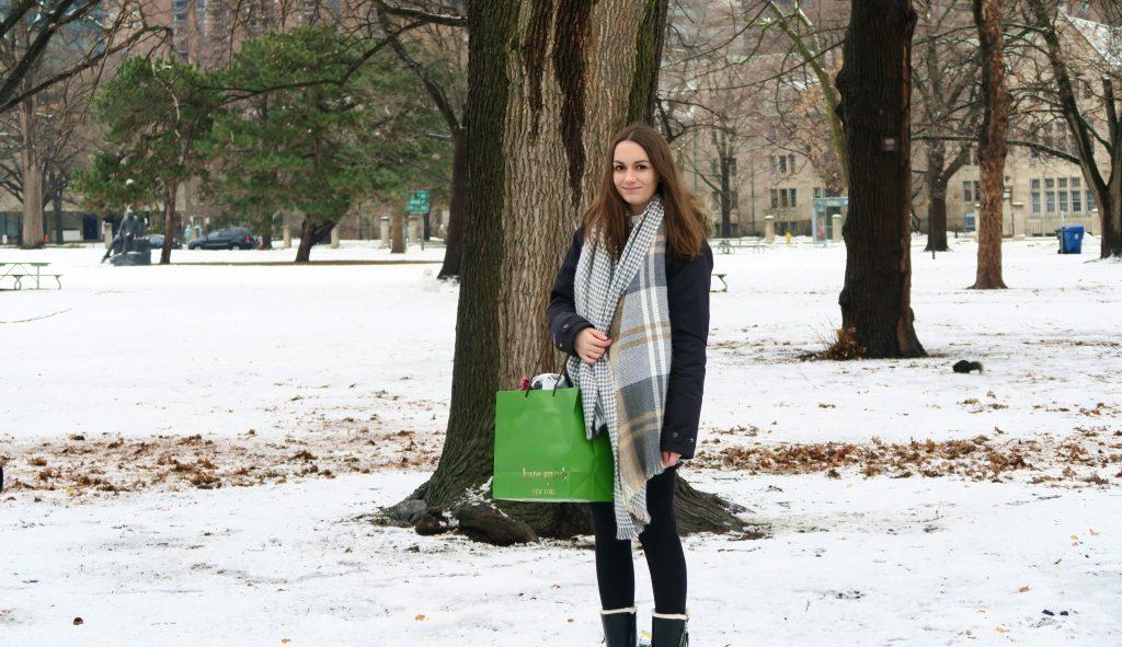 Toronto Queens Park Winter Snow