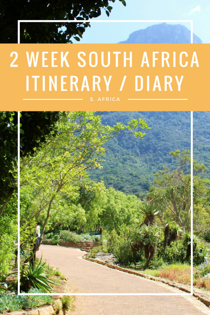 2 WEEK SOUTH AFRICA ITINERARY / DIARY - If you're looking to spend 2 weeks in South Africa, this is exactly what you need to do and see - hitting Kruger, the Garden Route an Cape Town!
