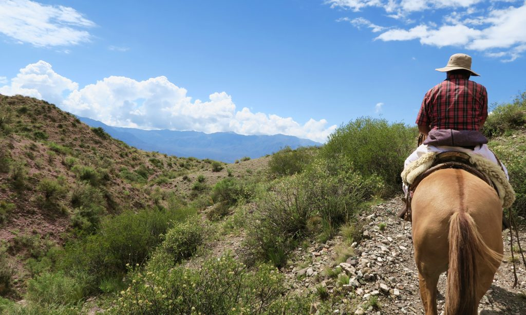 Argentina Mendoza Horseriding