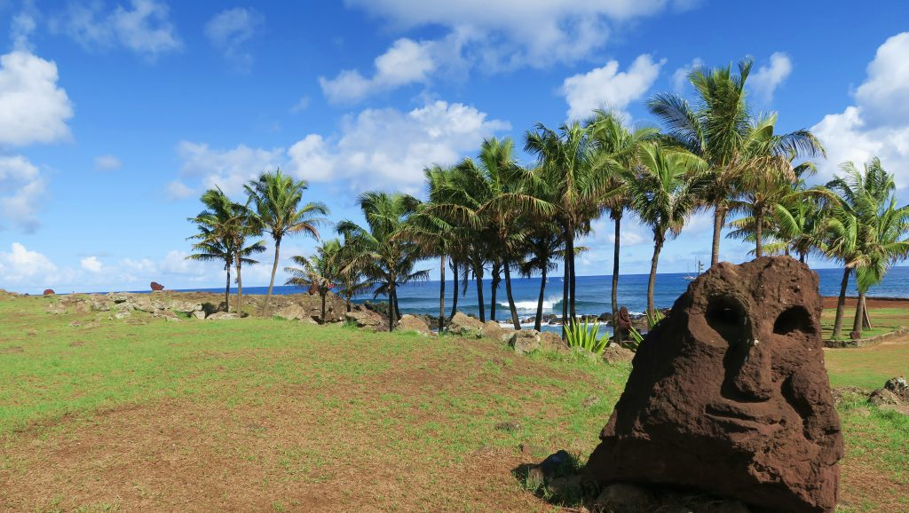 Easter Island Palm Trees