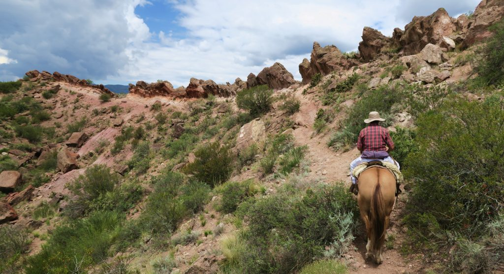 Horseback rider, Mendoza