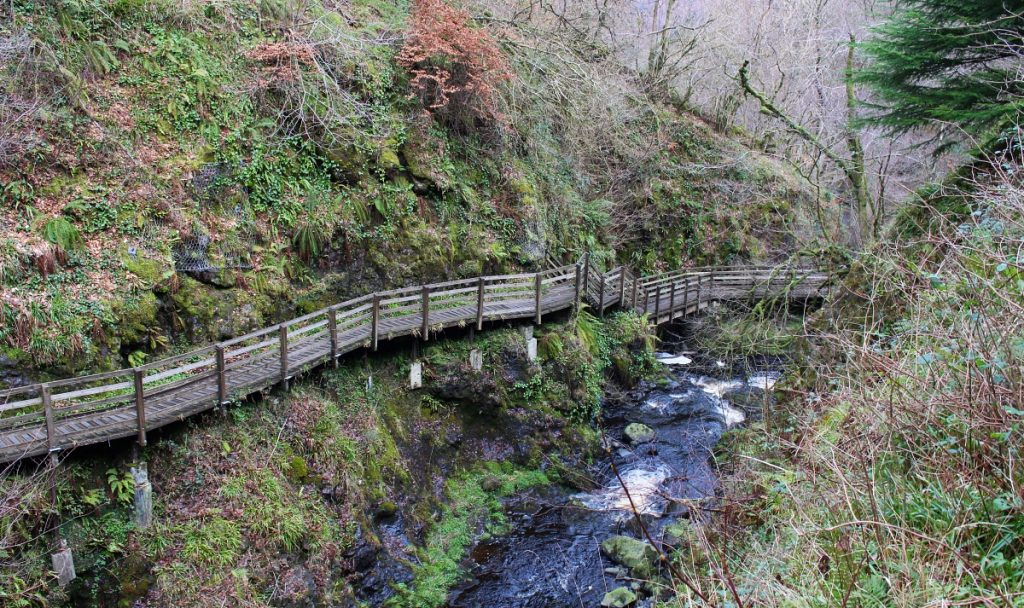 Glenariff Forest Park Valley
